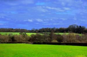 spring-landscape-1332322384tJ6